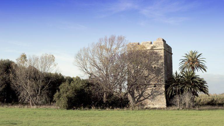 Torre_Primavera_1