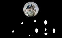 logo_castellosangiorgio-8